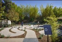 Landscape architecture / by Healthcare Design Magazine