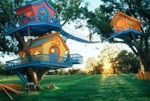 TREE HOUSES / anything on or attached to trees for shelter..