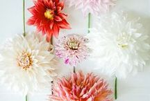 Wedding Flowers / all things floral