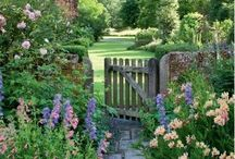 Country Gardens / Old fashioned country/cottage gardens