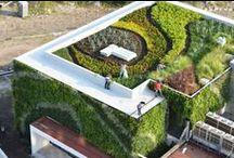 Telhado Ecológico / Telhado Ecológico, Telhado Verde, Cobertura Verde, Eco Telhado, Green Roof, são denominações para o cultivo de plantas sobre o telhado ou uma laje impermeabilizada com uma drenagem adequada. http://bioclimatismo.com.br/telhado-verde