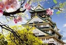 Study in Japan / Considering studying in Japan? Follow our board and find out about the country's top universities, best student cities, career options, places to visit and much more. #studyinJapan