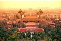 Study in China / What makes studying in China so special? Follow our board to find out more about studying in China, discover top universities, best student cities, beautiful places to visit, customs, traditions and much more.
