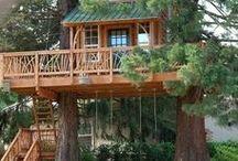 Casas de árboles