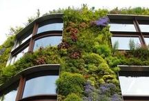 Eco-Friendly Architecture / by 911 Restoration