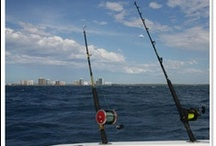 Fort Lauderdale Fishing / Spend some time fishing in Fort Lauderdale! Here are some ideas to get you started with planning your Fort Lauderdale fishing adventure! #fortlauderdale #lauderdalefishing