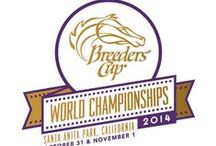 Breeders' Cup / by Georgia Horse Racing Coalition