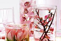 Enfeitando meu lar... / Idéias para enfeitar sacadas, jardins, interior da casa com arranjos de plantas, flores, frutas, velas...