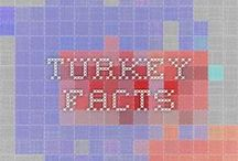 Facts and Stories about Turkey / Facts and stories about turkey, turkish history and lifestyle
