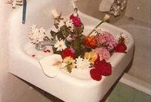 kukat flowers blommor