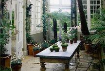 My Secret Garden / Lovely, colourful, secret, cottage, english, secret garden, lovely garden, shabby garden, cottage garden, garden decorations, jardines, jardin