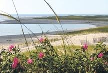 Beaches of Cape Cod