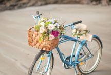 Flowers & Bikes / basket bikes flowers