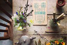 Flowers & Vasels