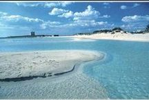 Apulia Vacation / Discovery this authentic south italian region through our charming villas to rent and our private tour www.pugliamoremio.com