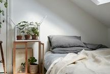 // Interior & Bedroom