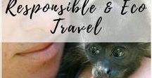 Responsible & Eco Travel / Travel ideas, destinations, and tips on travel that's low impact and friendly to the environment, animals, and your fellow human beings. | Authentic travel, Responsible travel, Eco travel, Transformative Travel