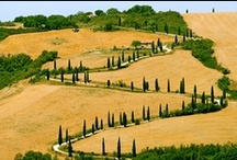 Tuscany / Events, places, how to see and where to go to live fully Tuscany!!!