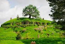 New Zealand / Inspiring stories, reviews, tips and photos of New Zealand