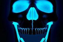 不 SKULL FETISH 不 / Me + Skulls ----> LOVE #skull #skulls #skeleton #skeletons #skullart #skullfetish