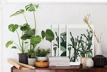 PLANT LIFE / Inspiration from anything that's green and grows.