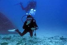 Activities - Scuba Diving / by Tina Miller