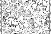 Activities - Coloring / by Tina Miller