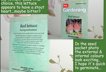 My 2013 Which Gardening? Seed trial choices / As a subscriber to Which? here are the seeds I've chosen to sow and report back on this year.