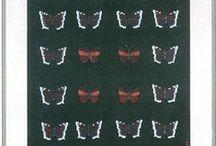 Butterflies and Fairies / art