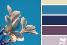 design seeds Palettes / Palettes from the site design-seeds.com
