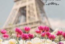 Paris * Cidade das luzes