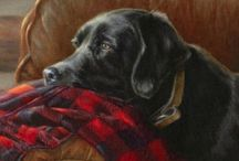 Love of Labs / by Linda Pitre