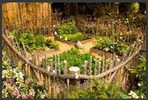 garden & ideas for growing