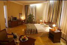 Hotel nebo Penzion v ČR / Hotel nebo Penzion v ČR. Typ firmy B2B, B2C, B2B2C a B2B2B.  Ideální zákazník opakuje nákupy i několikrát do roka, je cizinec i tuzemec. Hotel pořádá cílené akce (i pravidelně) pro doprodej kapacit globálně. Výchozí jazyk dle zaměření klientely - převážně AJ, lze přiřazovat účty v sociálních sítích i v dalších jazycích. Globální dosah s virtuálním produktem a službou.