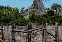 Disney Parks: Typhoon Lagoon
