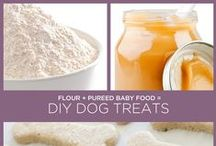 Healthy Dog Recipes