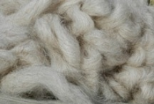 Solitude Wool Roving / In addition to yarn, we also sell roving for handspinning. Like our yarn, our wool is sourced from local farms and is available in breed-specific small batches. Check out what's currently available at www.solitudewool.com/roving-etc.