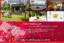 Promotion in Flamingo Dai Lai resort / Hot and up to date promotion packages, discount coupon from Flamingo Dai Lai Resort. http://resort.flamingodailai.com/en/news/57/Sales-Promotion