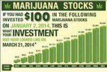 Cannabis Infographics