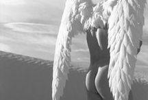 Male Angels