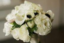 Wedding bouquet + 2nd bouquet