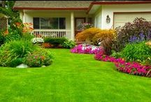 """Curb Appeal Tips / Curb appeal tips for your Summit County homes. Nothing says """"buy me"""" more than the first impression a potential buyer gets when visiting your home."""