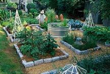 Designing Your Garden / Your garden is an extension of your home, no matter its size, so have fun designing it!