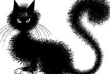 black cat/ zwarte kat