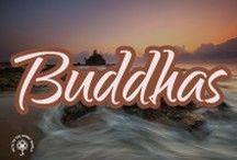 Buddha's / All about Buddha's