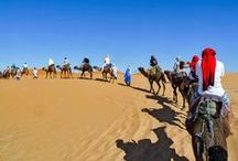 Tour Marruecos en MOTO BMW   Emilio Scotto World Tours / Marruecos Imperial y Mágico   Un viaje de ensueño sacado de una película de Hollywood. Tánger, Fes, Marrakech, Chefchaouen, el Cañón del Todra, las curtiembres, Marrakech, el desierto del Sahara en camellos, los hoteles oasis. Marruecos, una perla en el norte africano.