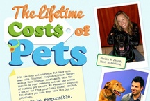 Pet Wisdom / Articles pertaining to pet wisdom, and important information!