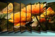 Blumen aller Art / Bilder von allen Blumen mit Deco.....