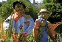 Scarecrows / Information on Scarecrows for Fall
