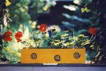In unserem Garten / Garten, Deko, Pflanzen, Blüten, Blumen
